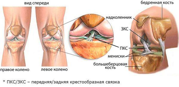 Пухлое колено чем лечить больные суставы народная медицина